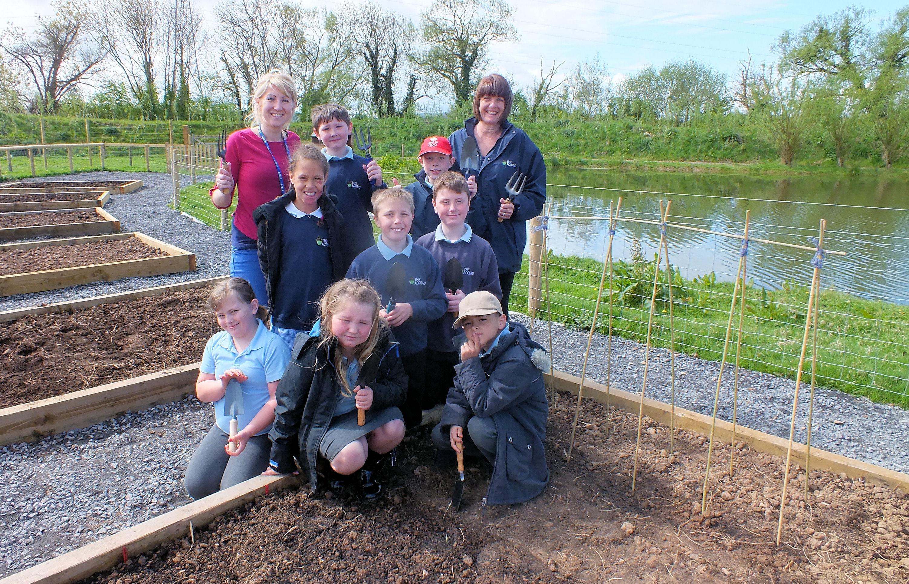 Pupils visit allotment to plant seeds
